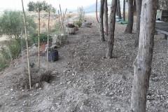 soterramiento-instalacion-internet-y-cables-alimentacion-6
